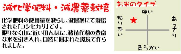 会津の自然に囲まれた環境で作られたコシヒカリ